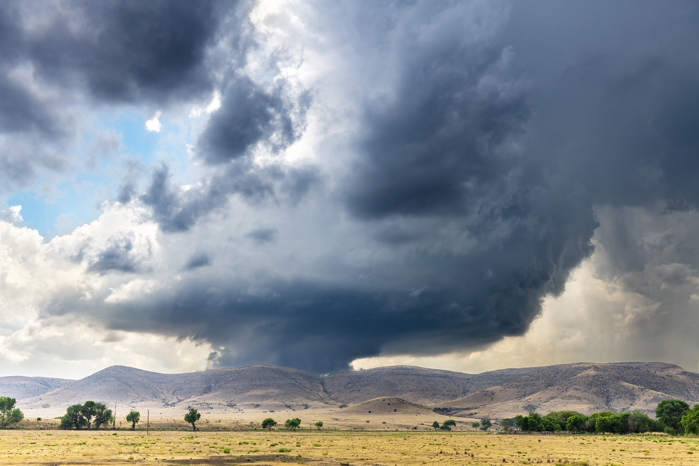 Wind Damage Insurance Claims